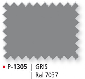 P-1305