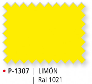 P-1307