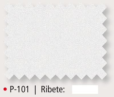 P-101