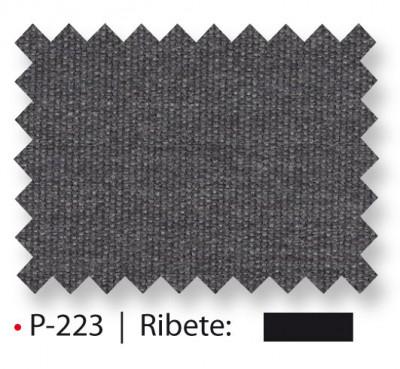 P-223_2015