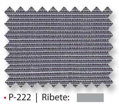 P-222_2015