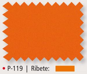 P-119